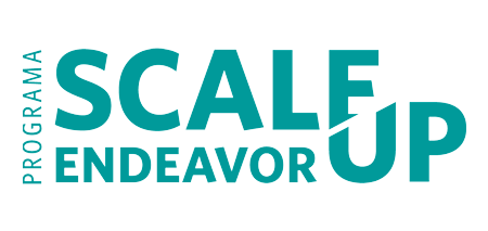 Scale Up Endeavor
